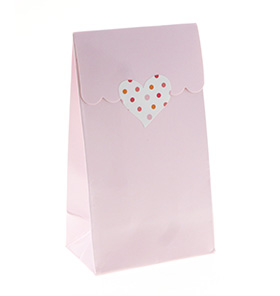 Pastel Pink Gloss Treat Bag