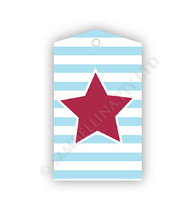 Star Stripes Gift Tags